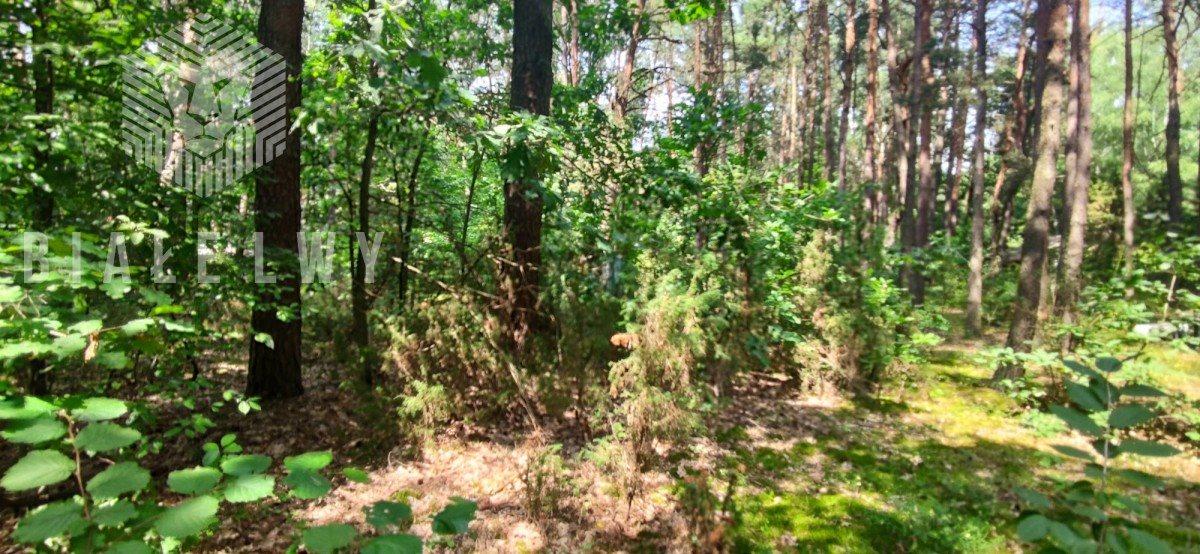 Działka leśna na sprzedaż Radachówka  1200m2 Foto 7