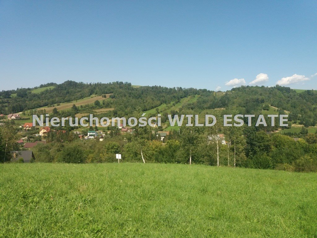 Działka rolna na sprzedaż Solina, Wołkowyja  8300m2 Foto 1