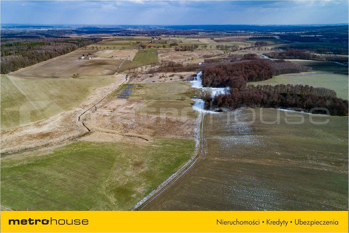 Działka rolna na sprzedaż Piskajny, Godkowo  11900m2 Foto 2