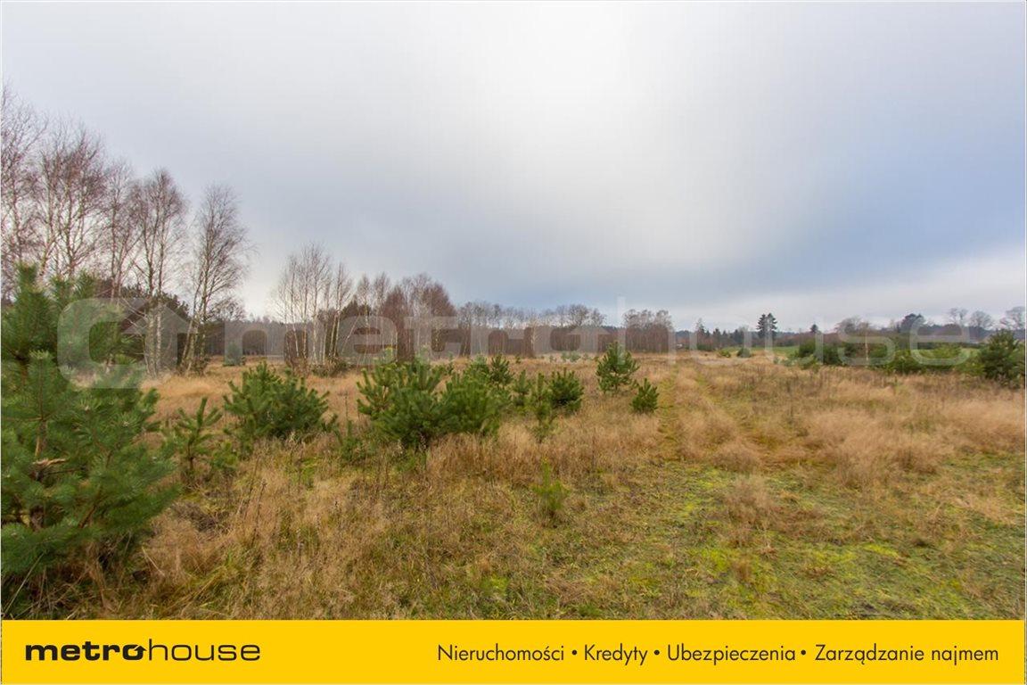 Działka rolna na sprzedaż Jelonek, Borne Sulinowo  30900m2 Foto 3