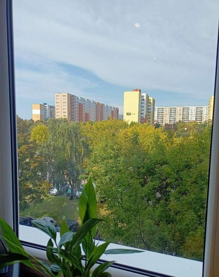 Mieszkanie trzypokojowe na sprzedaż Poznań, Grunwald, kopernika, poznań  59m2 Foto 6