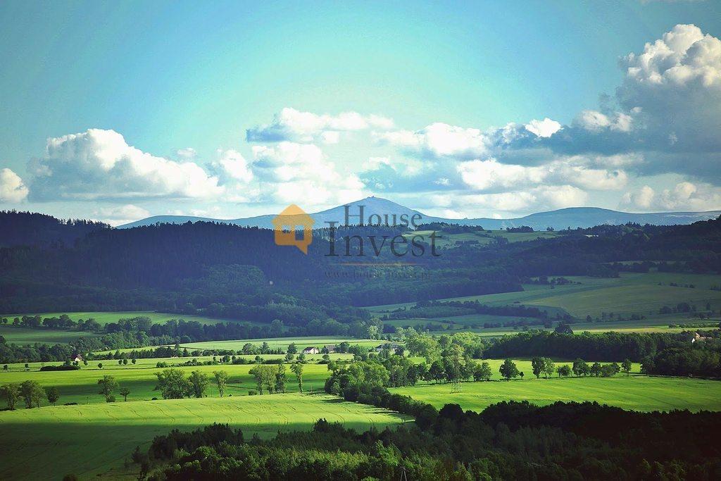Lokal użytkowy na sprzedaż Sędziszowa  1571m2 Foto 8
