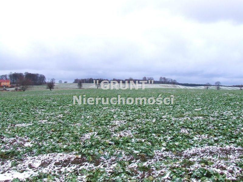 Działka rolna na sprzedaż Skrzatusz  10029m2 Foto 4
