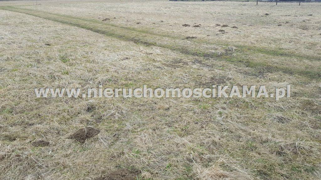 Działka inna pod dzierżawę Buczkowice  5000m2 Foto 2