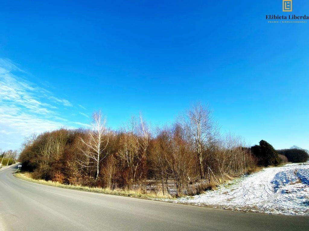 Działka leśna z prawem budowy na sprzedaż Konopnica  8900m2 Foto 1