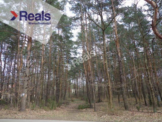 Działka leśna z prawem budowy na sprzedaż Warszawa, Wawer, Radość  3120m2 Foto 4