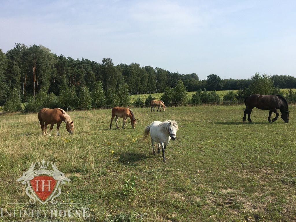 Działka rolna na sprzedaż Jaskółowo  56700m2 Foto 2