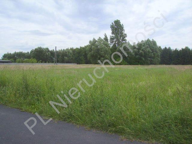 Działka rolna na sprzedaż Holendry Baranowskie  28400m2 Foto 5
