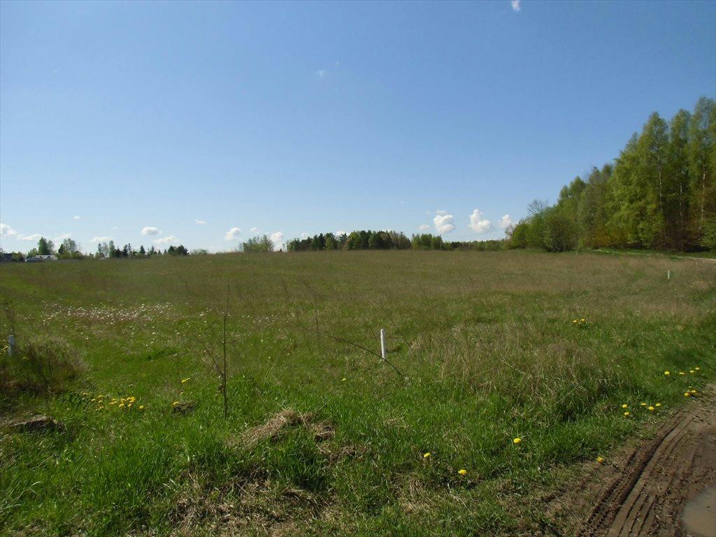 Działka rolna na sprzedaż Bojano, Wołoszyna  180000m2 Foto 1