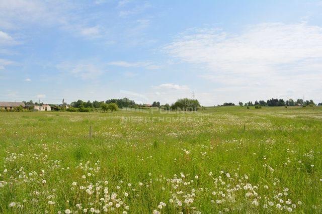 Działka rolna na sprzedaż Dobrzyniewo Kościelne  3196m2 Foto 7