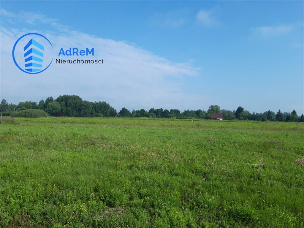 Działka rolna na sprzedaż Cieciszew  3700m2 Foto 2
