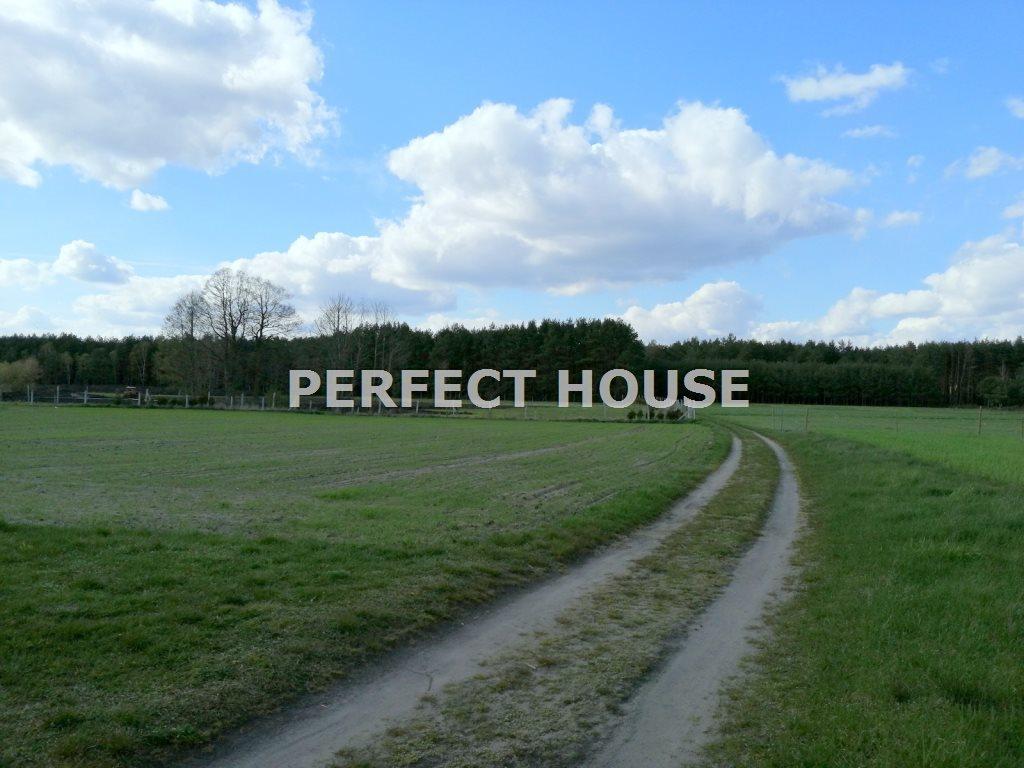 Dom na sprzedaż Drawsko  268m2 Foto 6