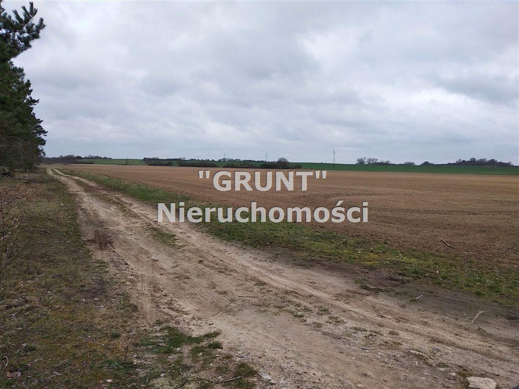 Działka rolna na sprzedaż Kotuń  150000m2 Foto 3