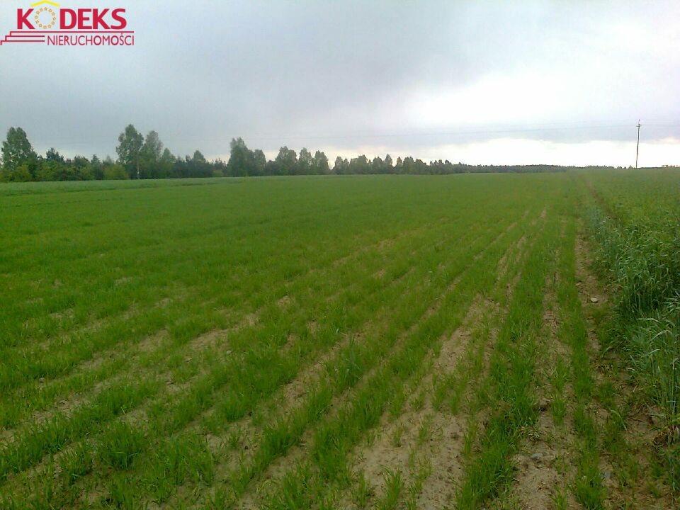 Działka rolna na sprzedaż Borkowo  17474m2 Foto 1