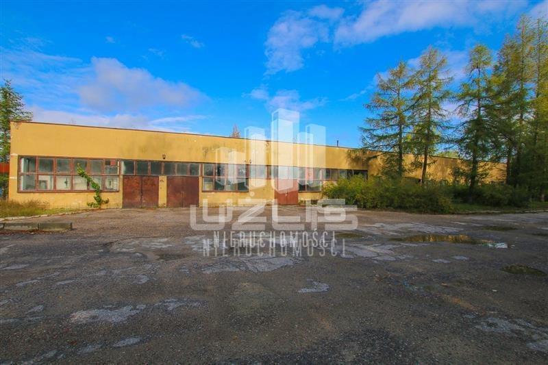 Działka przemysłowo-handlowa na sprzedaż Skibno  37100m2 Foto 6