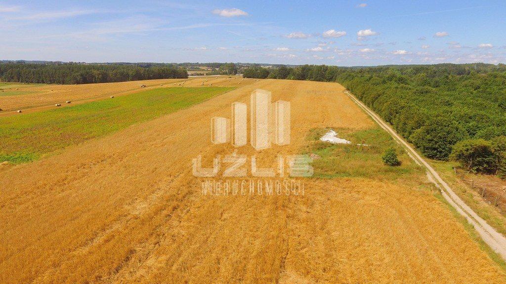 Działka rolna na sprzedaż Chwaszczyno, Polna  20000m2 Foto 5