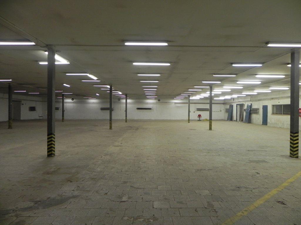 Lokal użytkowy na sprzedaż Katowice  3100m2 Foto 2
