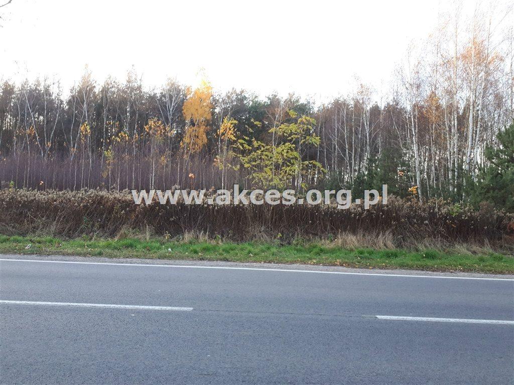 Działka leśna na sprzedaż Nowy Prażmów  17600m2 Foto 1