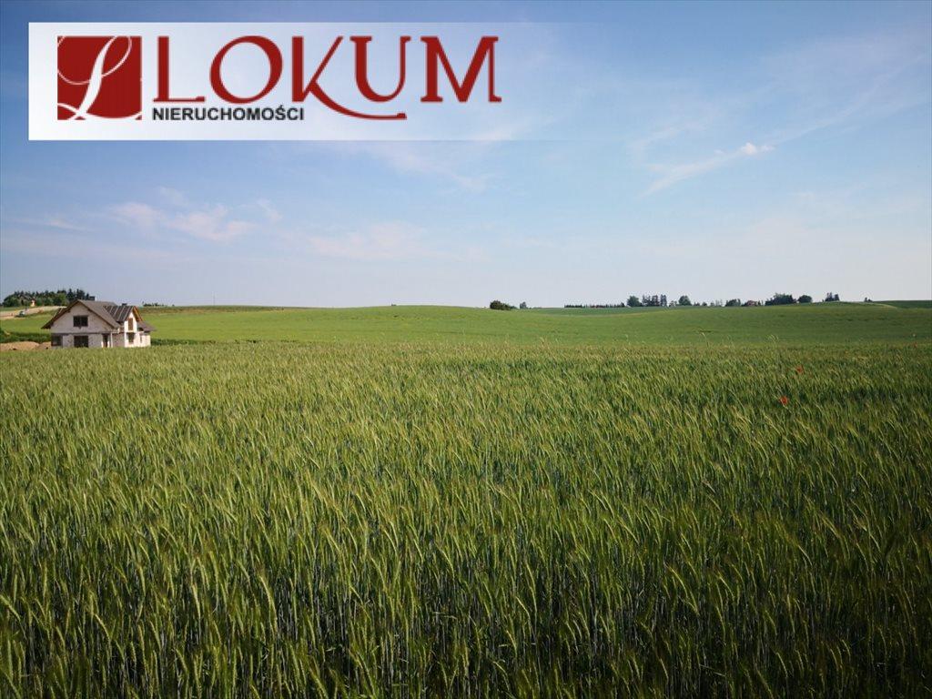 Działka przemysłowo-handlowa na sprzedaż Kleszczewo, Jodłowa  15009m2 Foto 6