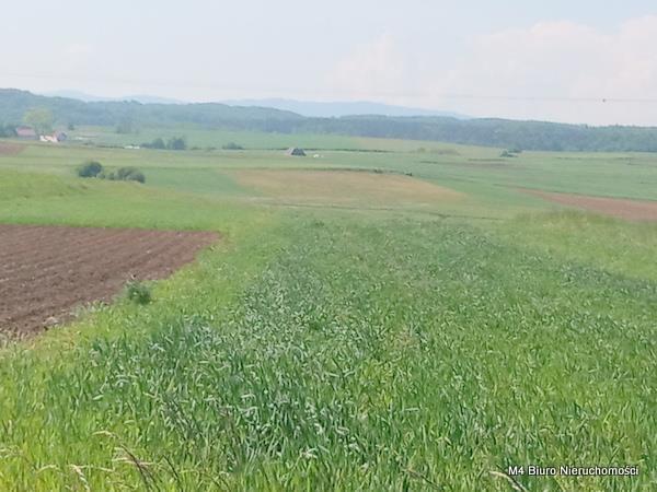 Działka rolna na sprzedaż Łubno Szlacheckie  4700m2 Foto 2