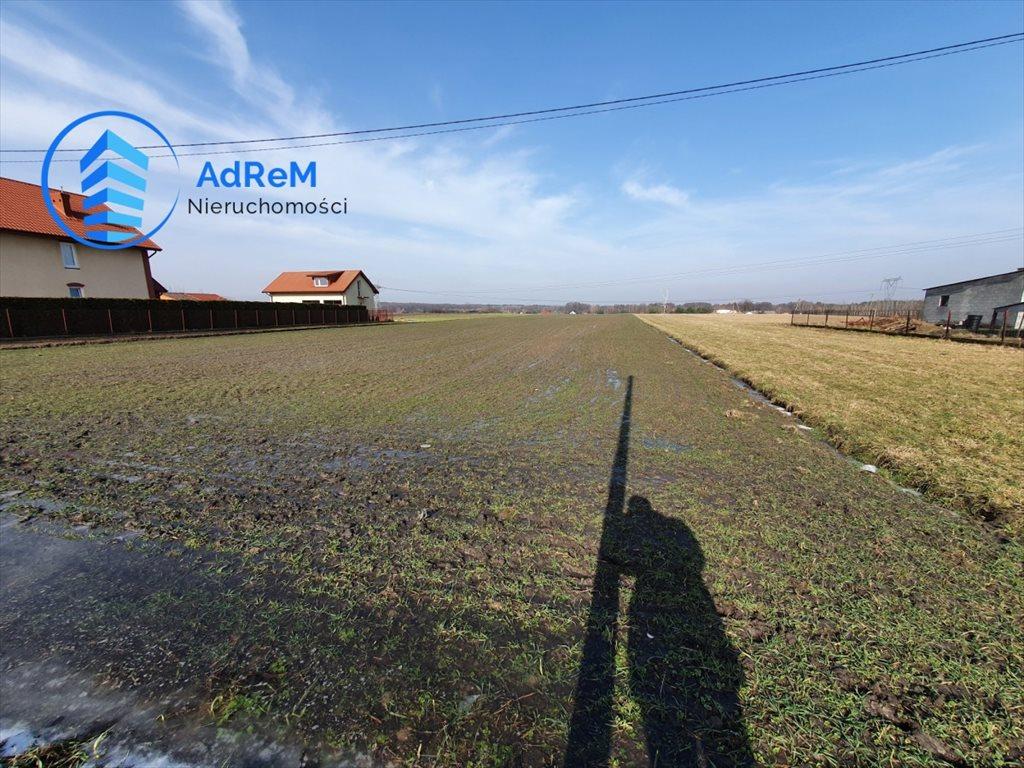 Działka rolna na sprzedaż Łazy  11000m2 Foto 3