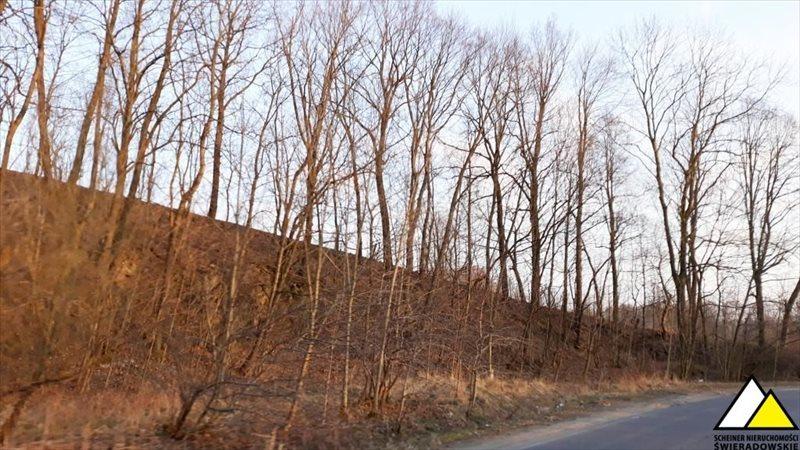 Działka leśna na sprzedaż Kościelniki Górne, Pogórze Izerskie  4800m2 Foto 5