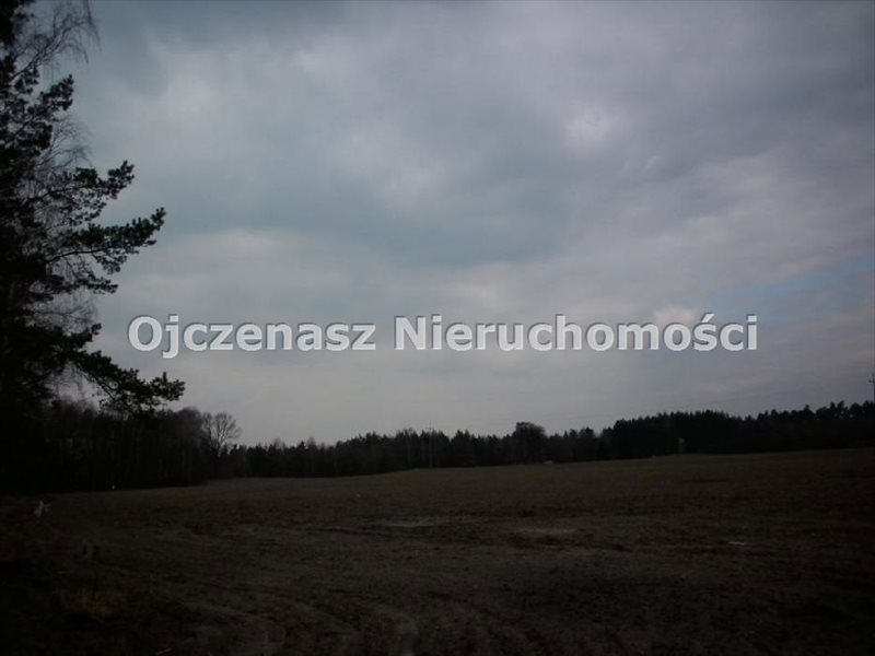 Działka inwestycyjna na sprzedaż Lubiewo  100000m2 Foto 4