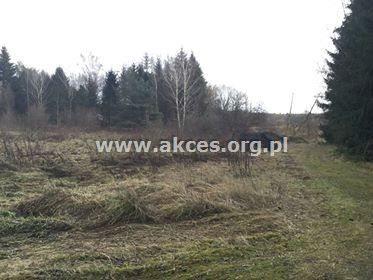Działka leśna na sprzedaż Henryków-Urocze  27900m2 Foto 11