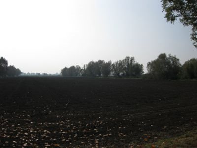 Działka inna na sprzedaż Kazimierzowo, Kazimierzowo  21172m2 Foto 6
