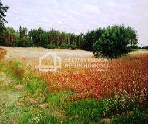 Działka rolna na sprzedaż Zielenin  43779m2 Foto 8