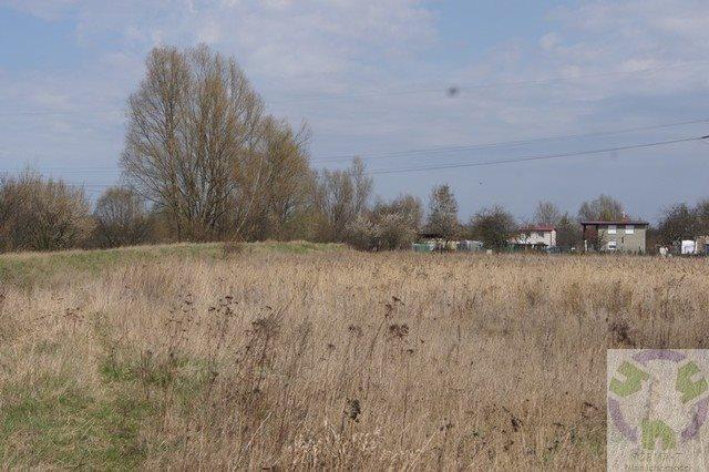 Działka rolna na sprzedaż Gdańsk, Olszynka, Olszyńska  11526m2 Foto 3