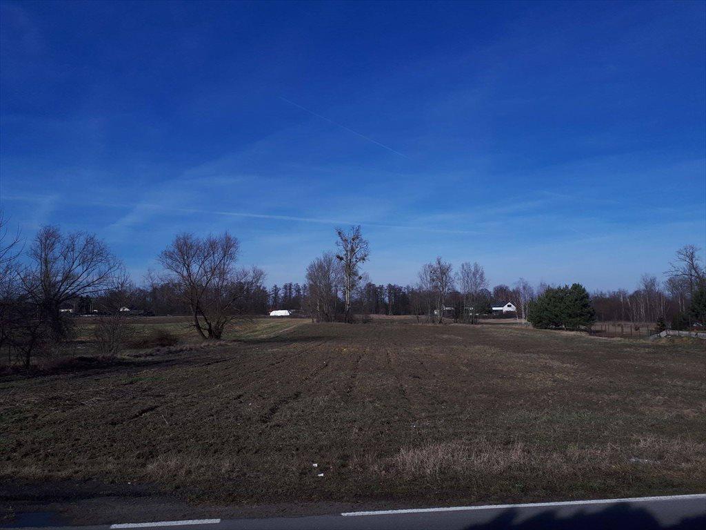 Działka rolna na sprzedaż Konstancin-Jeziorna, Obórki  10000m2 Foto 3