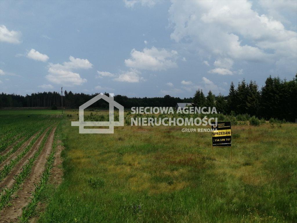 Działka siedliskowa na sprzedaż Śliwiczki  3157m2 Foto 1