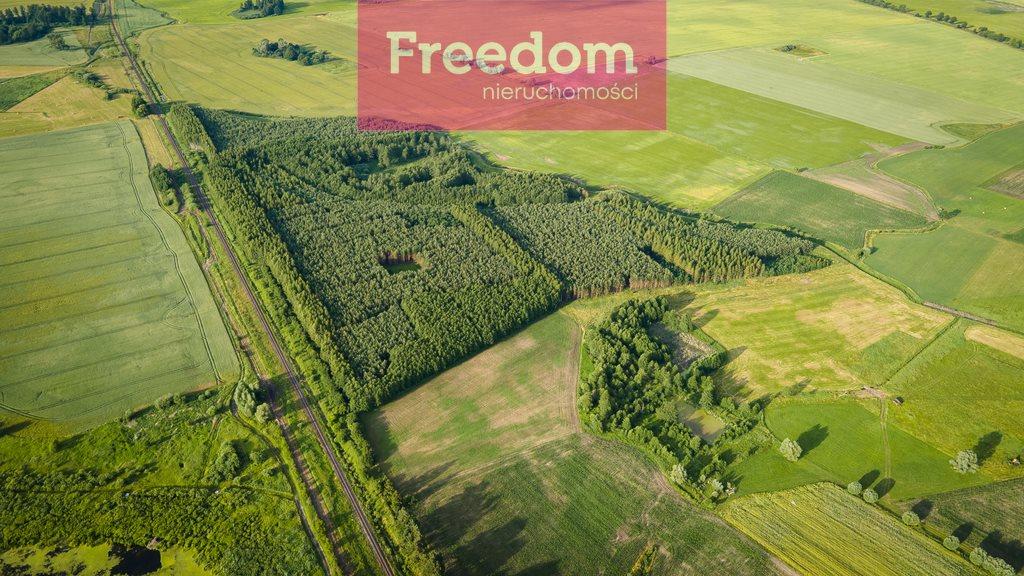 Działka leśna na sprzedaż Parys  205000m2 Foto 4