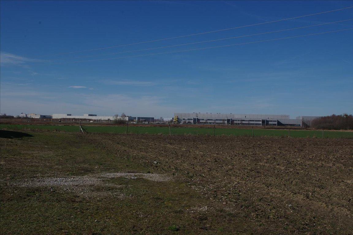 Działka rolna na sprzedaż Stary Mirków, Długołęka  4000m2 Foto 1