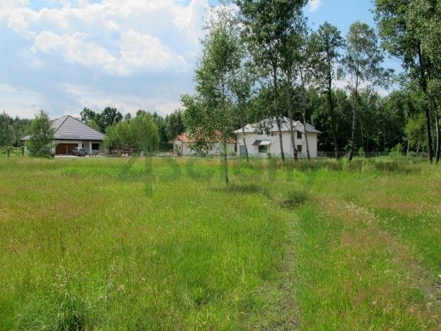 Działka leśna z prawem budowy na sprzedaż Owczarnia  5278m2 Foto 2