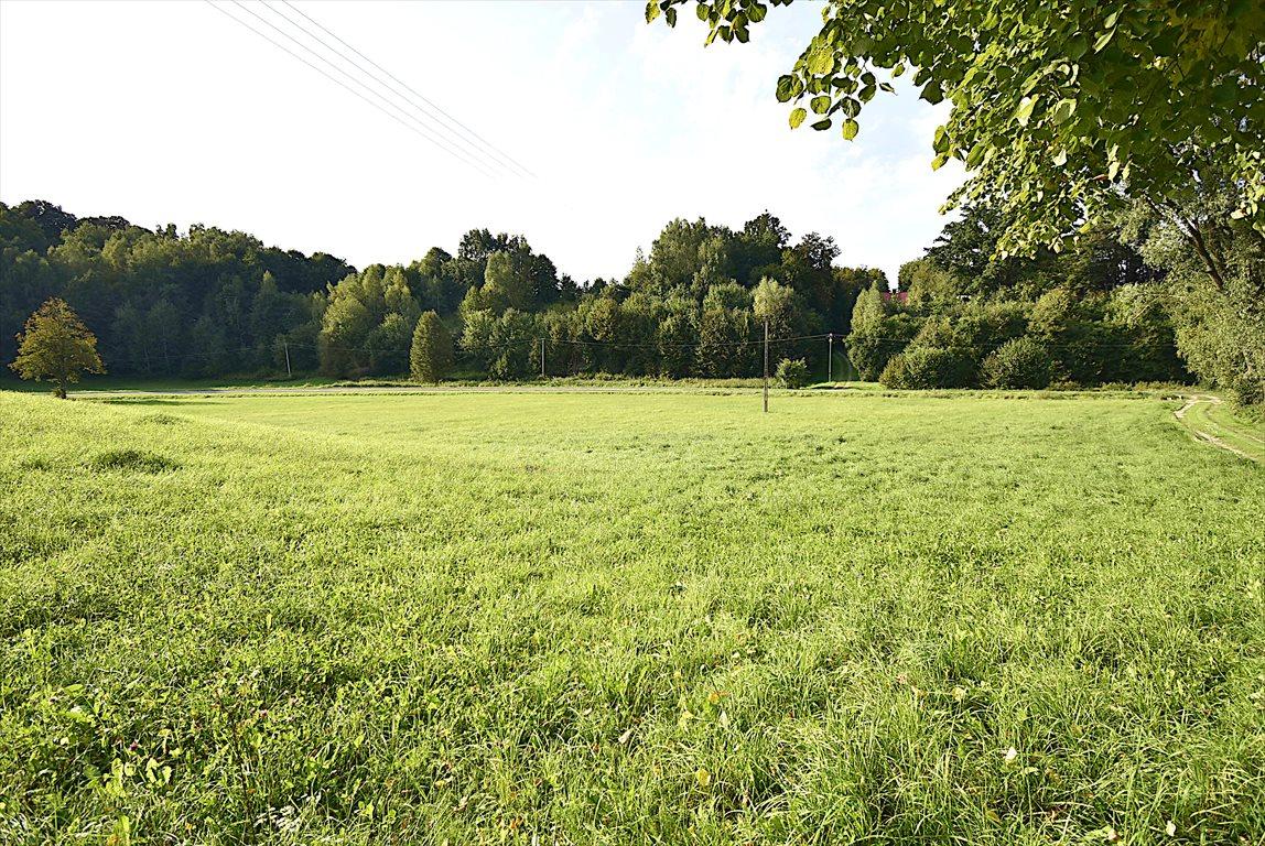 Działka rolna na sprzedaż Kazimierz Dolny  10000m2 Foto 3