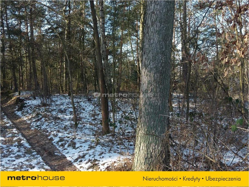 Działka leśna na sprzedaż Sierzchów, Góra Kalwaria  1680m2 Foto 3