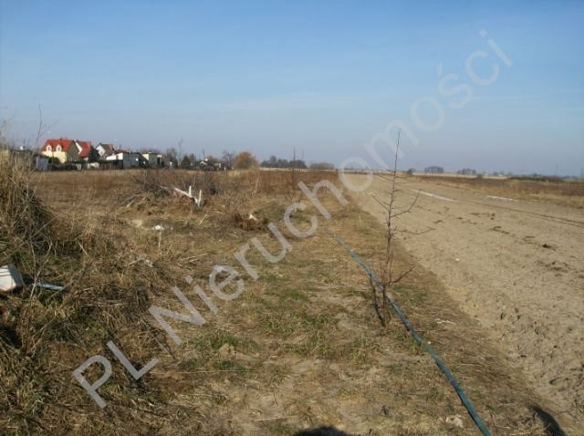 Działka budowlana na sprzedaż Błonie  6000m2 Foto 1