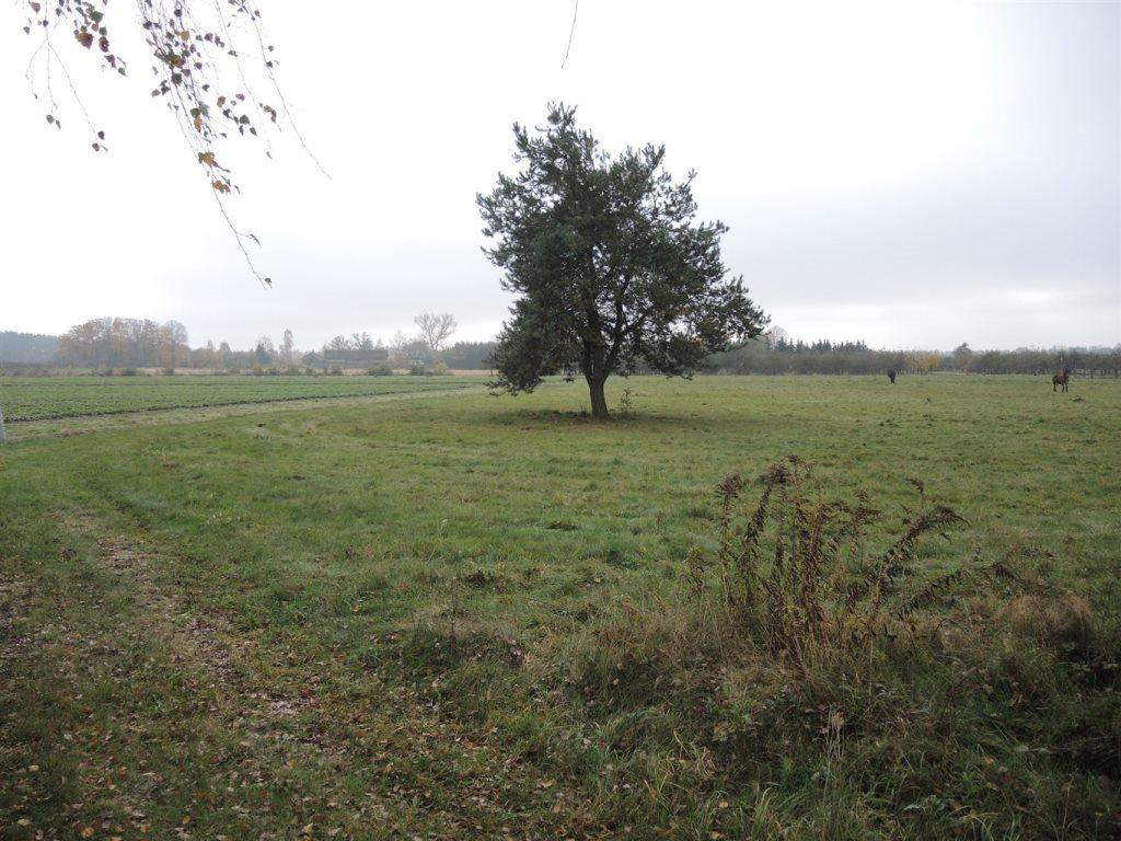 Działka rolna na sprzedaż Podlindowo  38000m2 Foto 9