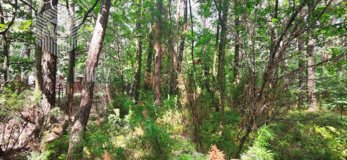 Działka leśna na sprzedaż Radachówka  1200m2 Foto 9