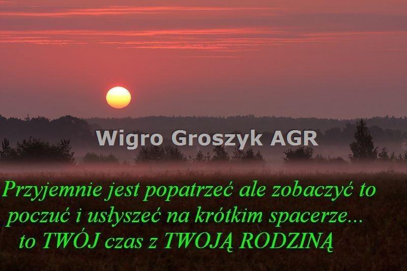 Działka leśna na sprzedaż Stanisławów  3076m2 Foto 3