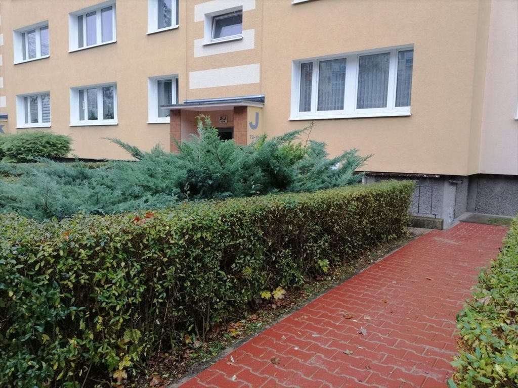 Lokal użytkowy na sprzedaż Poznań, Stare Miasto, Piątkowo  60m2 Foto 1