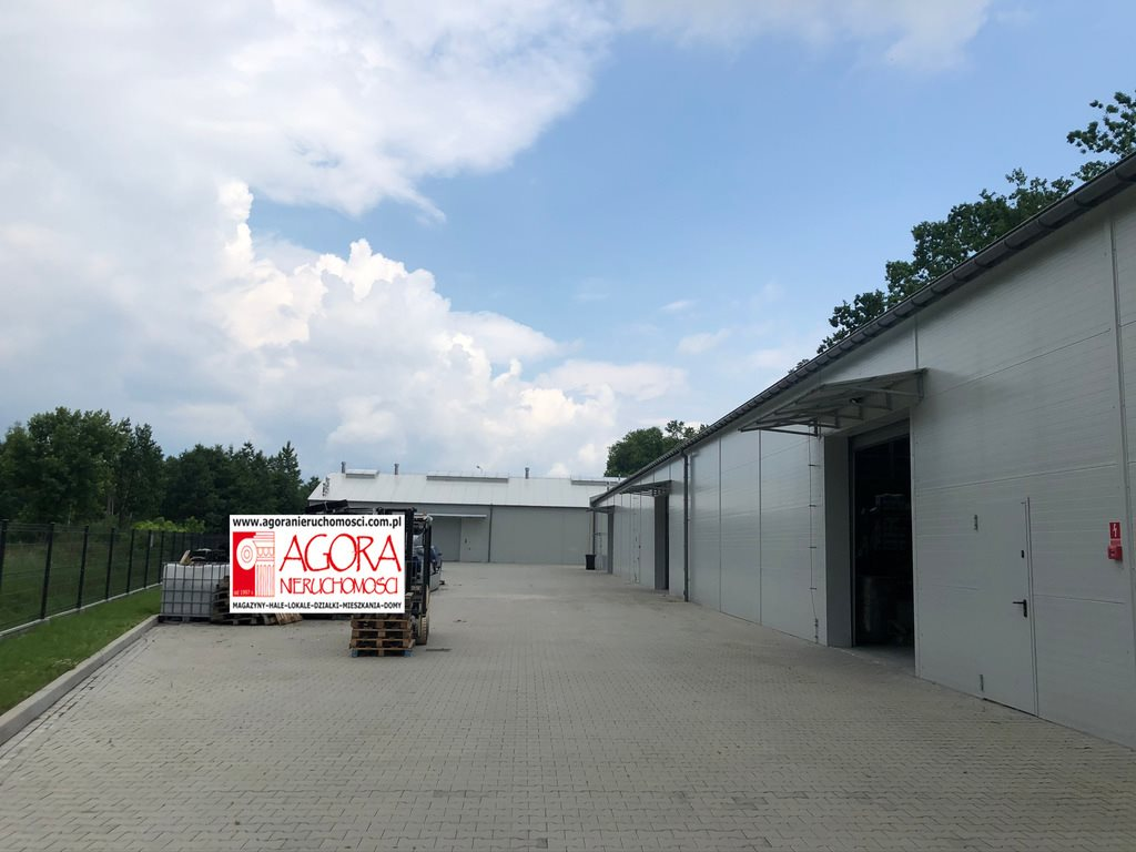 Lokal użytkowy na sprzedaż Niepołomice  4200m2 Foto 3