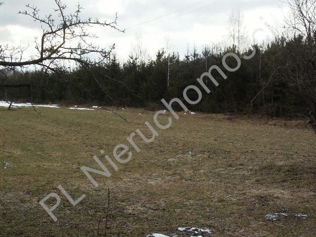 Działka rolna na sprzedaż Mszczonów  16700m2 Foto 7