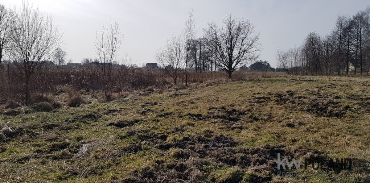 Działka rolna na sprzedaż Mikołów, Śmiłowice  2590m2 Foto 1