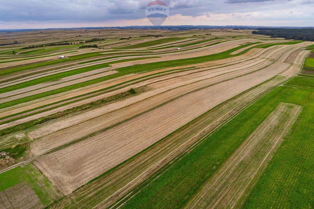 Działka rolna na sprzedaż Sułoszowa  14190m2 Foto 7