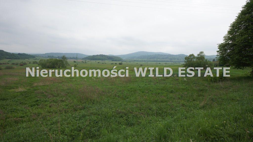 Działka budowlana na sprzedaż Olszanica, Uherce Mineralne  2500m2 Foto 2