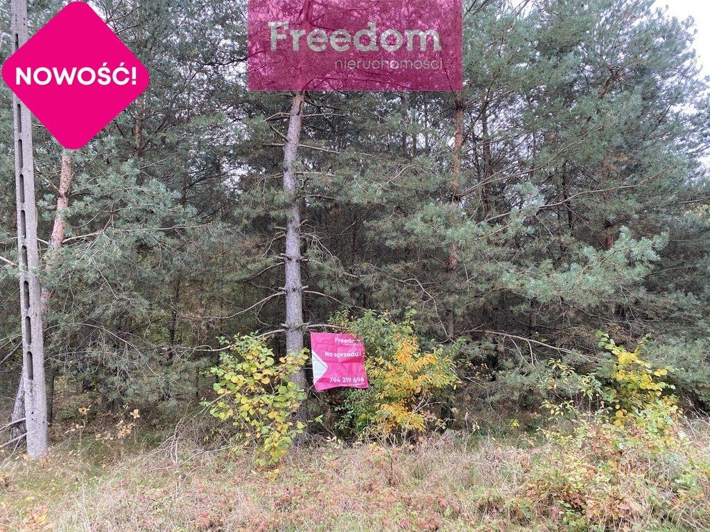 Działka leśna na sprzedaż Patok  16806m2 Foto 5