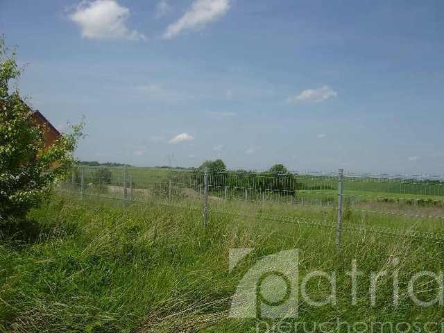 Działka rolna na sprzedaż Siadło Dolne  15000m2 Foto 6